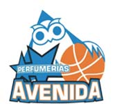 Diseñamos la Web oficial del equipo de baloncesto Avenida