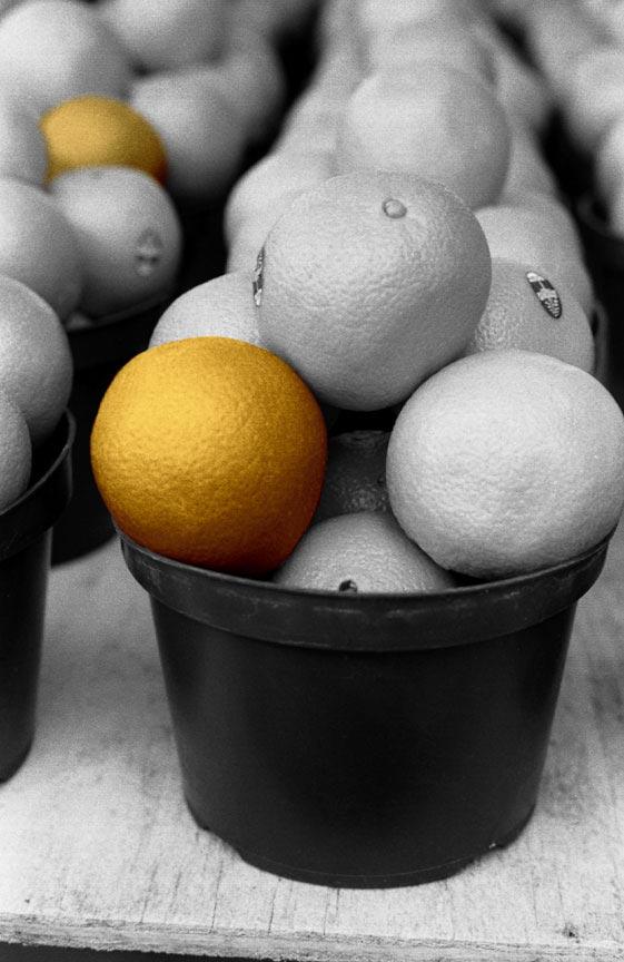 ¿Cómo vender un producto naranja?