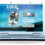 Diseño y programación página web. Plan de comunicación Zaldi