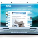 Diseño del blog. Plan de comunicación Zaldi
